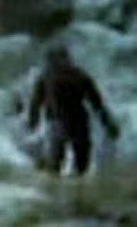 Photos: Yeti Filmed in Tatra Mountains, Poland - Phantoms and Monsters Wiki